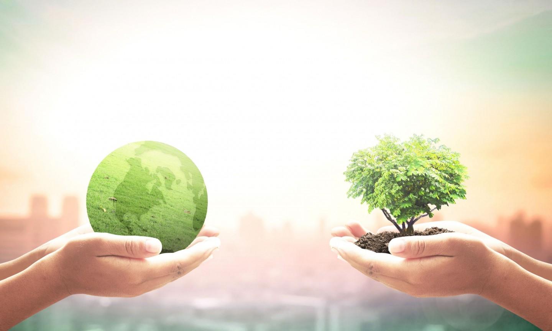 Duurzaamheid stappenplan