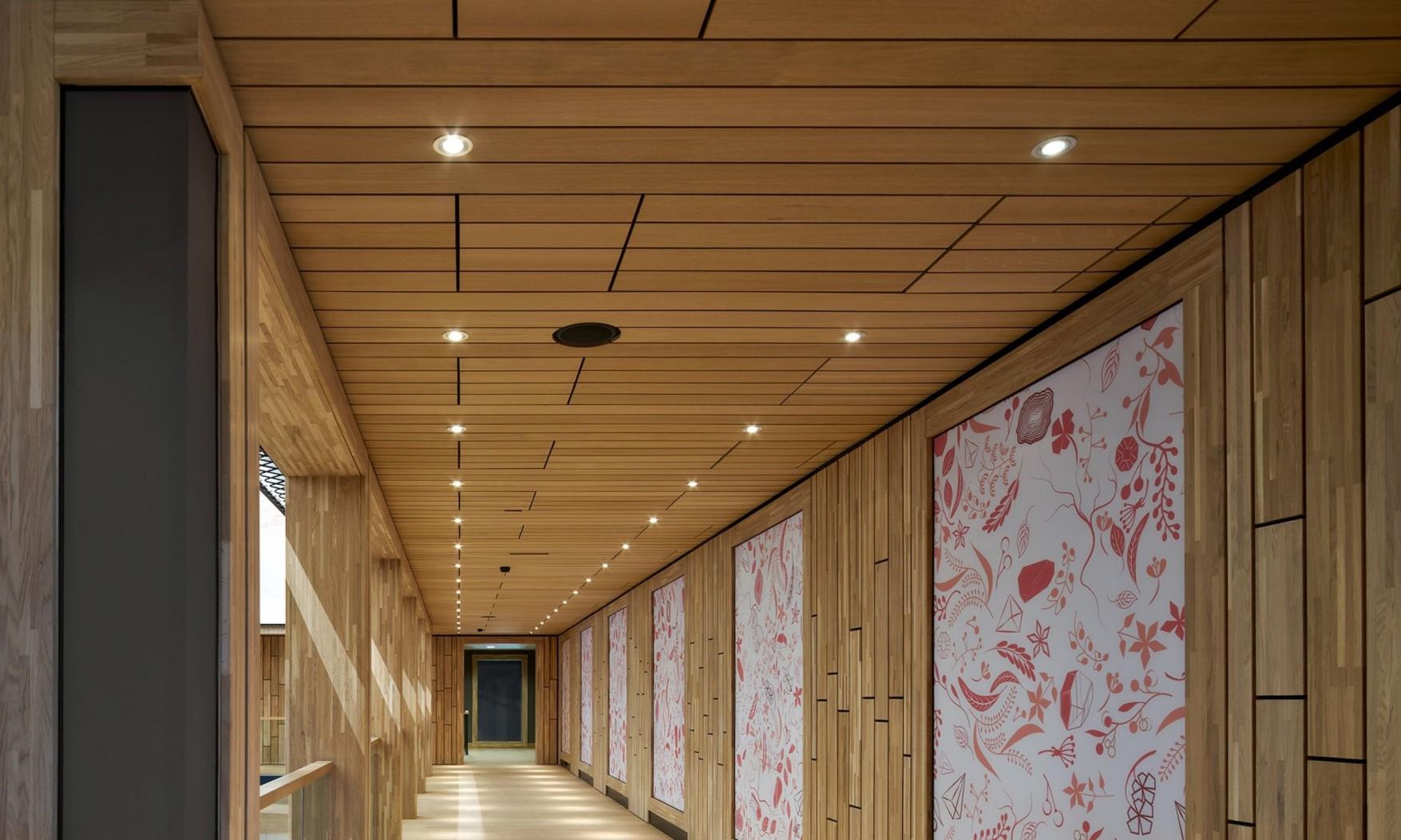 Harryvan Interieurbouw | latten plafond en wandbekleding (Naturalis Leiden)