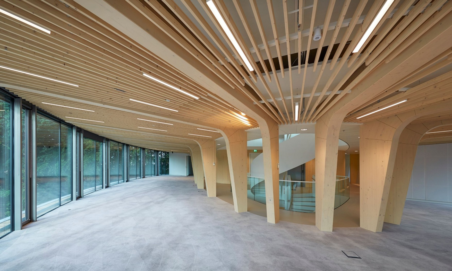 Harryvan Interieurbouw | latten plafond en wandbekleding (Triodos Bank Driebergen)