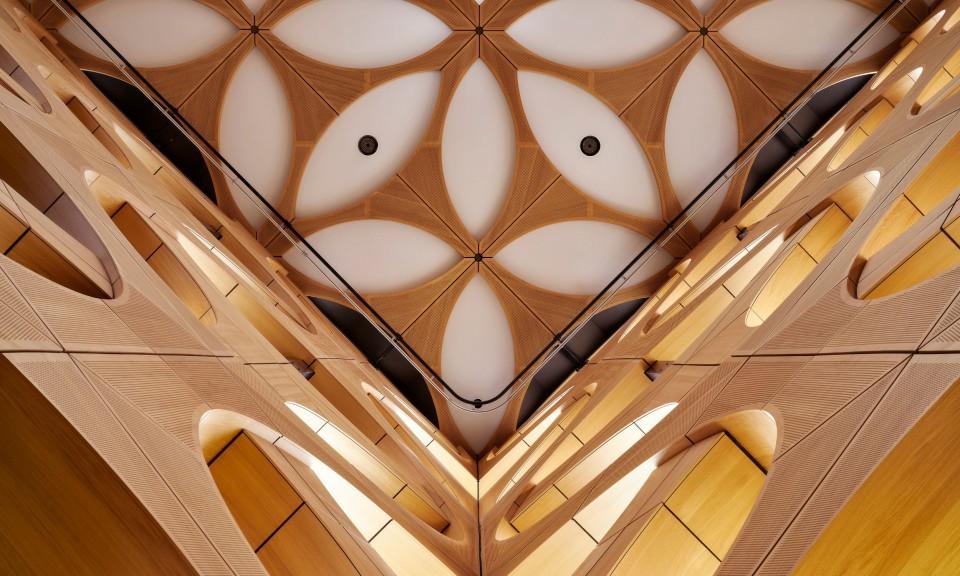 Harryvan Interieurbouw | panelen plafond en wandbekleding (Naturalis Leiden)