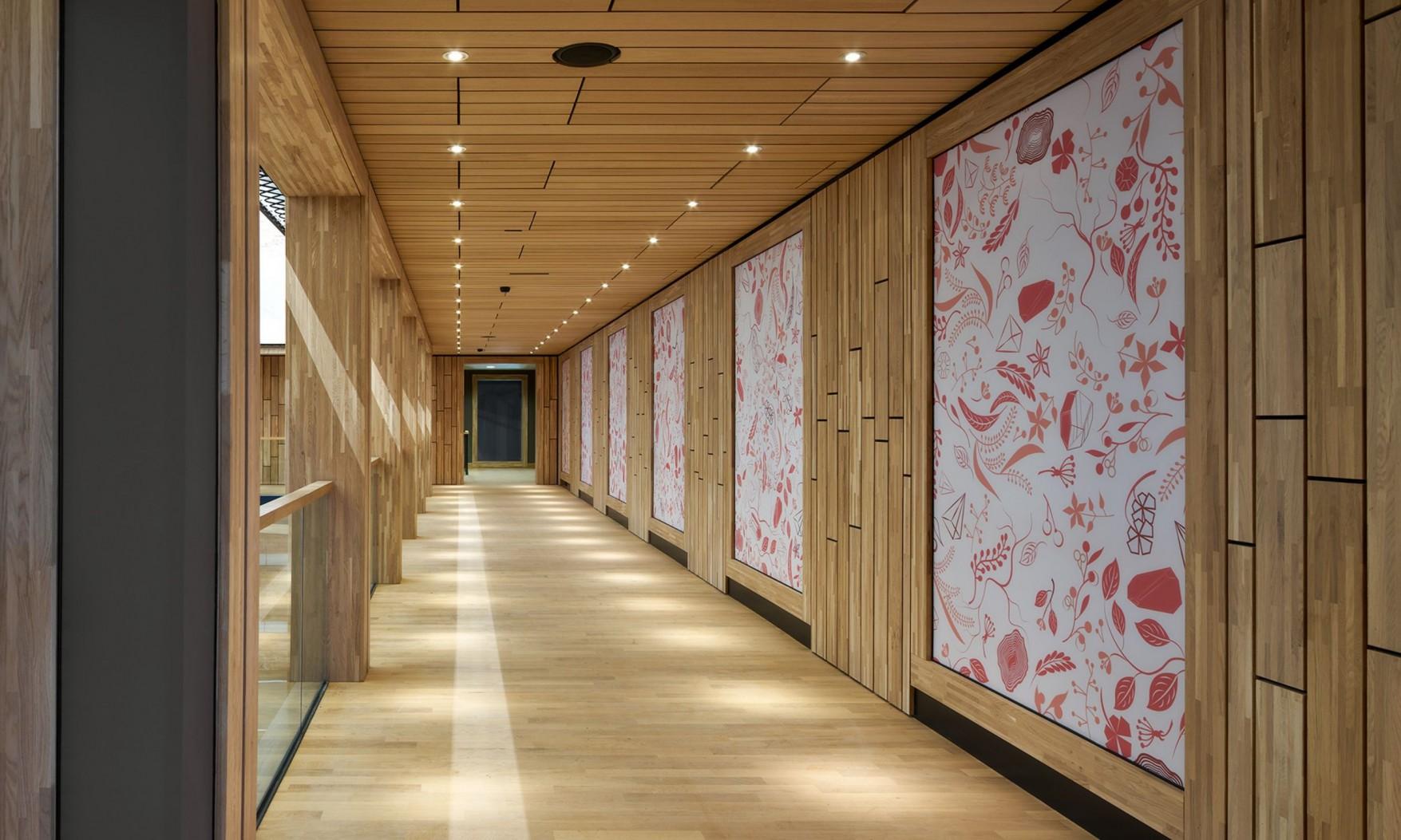 Harryvan Interieurbouw | specials plafond en wandbekleding (Naturalis Leiden)